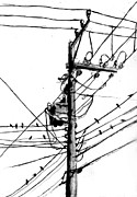 Electrical Pole With Birds Print by Di Fernandes