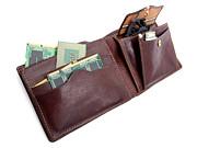 Electronic Wallet Print by Sinisa Botas