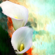 Calla Lily Digital Art Posters - Elegantly Pure Poster by Lourry Legarde