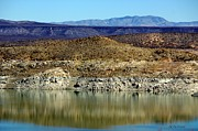 Las Cruces Art Prints - Elephant Butte Lakes Edge Print by Barbara Chichester