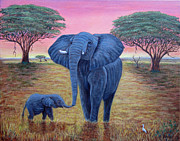 Fran Brooks - Elephant Dawn