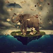 Elephant Island Print by Kim Zier
