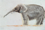 Cute Painting Posters - Elephant  Poster by Jung Sook Nam