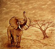 African Elephant Prints - Elephant Majesty original coffee painting Print by Georgeta  Blanaru