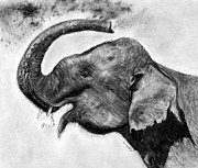 Black And White Pastels Posters - Elephant Poster by Marie Stone Van Vuuren