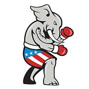 Elephant Mascot Boxer Boxing Side Cartoon Print by Aloysius Patrimonio