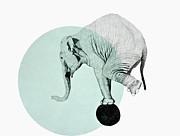 Elephant Print by Morgan Kendall