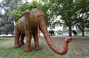 Hyde Park Posters - Elephant sculpture in Hyde Park London Poster by Robert Preston