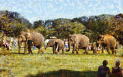 Elephant Photo Posters - Elephant train  Poster by Pixel  Chimp