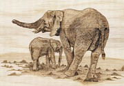 Elephant Pyrography Metal Prints - Elephants Metal Print by Danette Smith