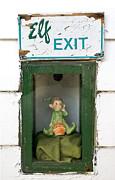 Steven Ralser - elf exit
