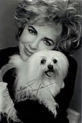 Elizabeth Taylor And Friend Print by Studio Photo