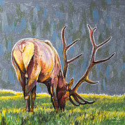 Grass Pastels Framed Prints - Elk Framed Print by Aaron Spong