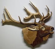 Intarsia Sculpture Framed Prints - Elk Framed Print by Annja Starrett
