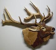 Elk Print by Annja Starrett