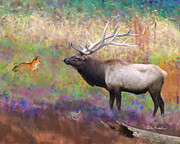 Elk Framed Prints - Elk Art - Saving Thumper Framed Print by Elk Artist Dale Kunkel