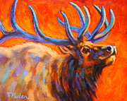 Vibrant Paintings - Elk at Sunset by Theresa Paden