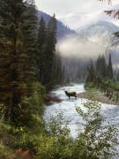 Bull Elk Art - Elk Crossing by Leland Howard