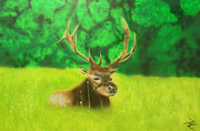 Etc. Painting Prints - Elk in the Distance Print by Michael Hall