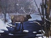 Noe Peralez - Elk In The Wilderness