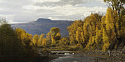 Panorama Digital Art Originals - Elk River Colors Pilot Nob V2 by Daniel Hebard
