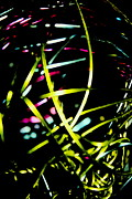Abstract Photos - Elliptical Bondage by Sandra Pena de Ortiz