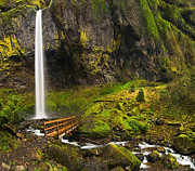 Jamie Pham Metal Prints - Elowah Falls Panorama -  Columbia River Gorge in Oregon Metal Print by Jamie Pham