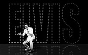 Elvis Presley Art - Elvis Presley by Cool Canvas