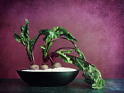 Vegetables Metal Prints - Embedded Metal Print by Priska Wettstein