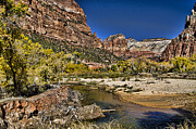 Zion National Park Framed Prints - Emeral Pools Trail - Zion Framed Print by Jon Berghoff