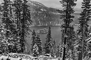 First Pyrography Prints - Emerald Bay Snowfall Print by John Ferebee