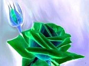 Emerald Digital Art - Emerald Rose Watercolor by Will Borden