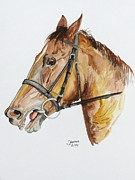 Race Horse Posters Prints - Emir the horse Print by Janina  Suuronen