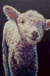Ovine Framed Prints - Emma Framed Print by Patricia A Griffin