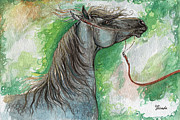 Horse Drawing Painting Prints - Emon Polish Arabian Horse 1 Print by Angel  Tarantella