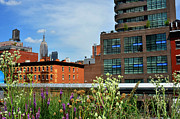 Empire State Building From The High Line Print by Diane Lent