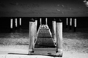 Dry Tortugas Prints - Empty Boat Pier With Seabirds Dry Tortugas Florida Keys Usa Print by Joe Fox
