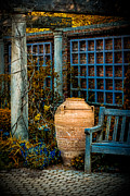 Julie Palencia Photography Photos - Empty Garden by Julie Palencia