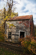 Rusted Tin Roof Photos - Empty Shell by Terry Rowe