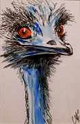 Emu Originals - Emu by Anne Gardner