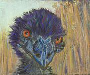 Emu Pastels - Emu by Kate Owens