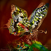 Print Digital Art Originals - Enchanted butterfly. First.  by Tautvydas Davainis