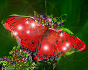 Signed Originals - Enchanted butterfly. Second.  by Tautvydas Davainis
