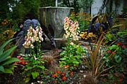 Byron Varvarigos - Enchanted Spring Garden