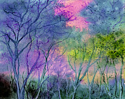 Brenda Owen - Enchanted Woodland