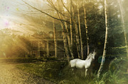White Unicorn Photos - Enchantment by Nichon Thorstrom
