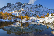 Leavenworth Photos - Enchantments Golden Larches by Mike Reid