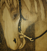 Horse Pyrography Originals - Encore  by Cheret Adar