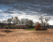 Barn In The Woods Framed Prints - End of Fall - Ohio III Framed Print by Roman Wilshanetsky