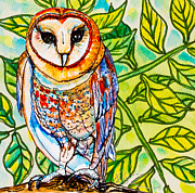 Kelly     ZumBerge - Endangered Barn Owl